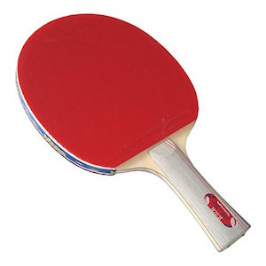 Best Butterfly Ping Pong Paddles